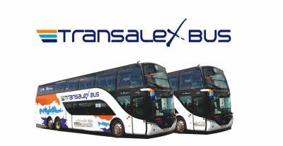 TRANSALEX BUS