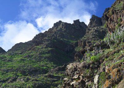 Tenerife_-_Buenavista_del_Norte_03