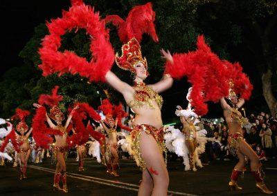 carnaval de santa cruz de tenerife carnavales 2019 2018 2017 2015 pictures islas canarias