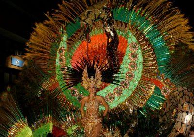 carnaval de santa cruz de tenerife carnavales 2019 2018 fotos_Nautalia