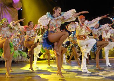 comparsa fotos carnaval 2019 2018 de santa cruz de tenerife carnavales 2016 2017 2015 pictures carrozas