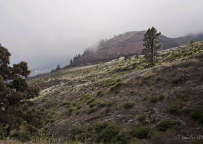 foto Arafo tenerife en islas canarias Chivisaya altos de Arafo España