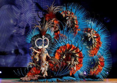foto carnaval 2019 2018 de santa cruz de tenerife carnavales 2016 2017 2015 fotos amanda-perdomo