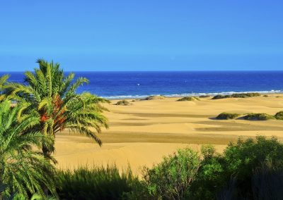 Natural Reserve of Maspalomas Dunes, in Gran Canaria