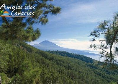 fotografias del parque nacional del teide paisajes panoramicos de tenerife arona