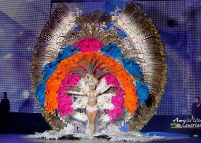 fotos carnaval de santa cruz de tenerife carnavales 2016 2017 2015 pictures noemi-hormiga traje