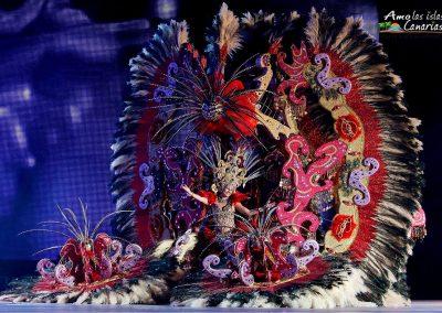 fotos carnaval de santa cruz de tenerife carnavales 2016 2019 2018 pictures sara-davila-lopez