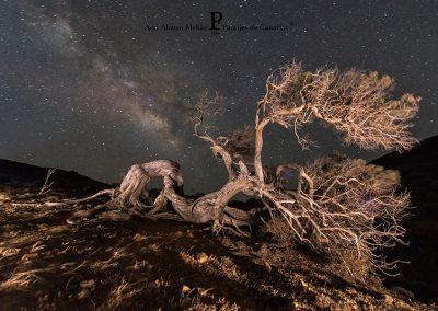 fotos de estrellas fotografia paisajes playas de las Islas canarias Tenerife La Gomera Gran Canaria amolasislascanarias.es