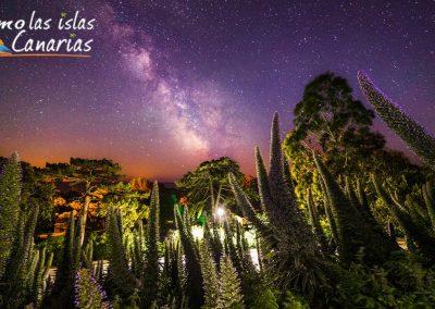 fotos de las estrellas en el teide vegetacion en canarias imagenes de noche tenerife arona