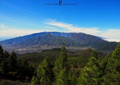 fotos de paisajes pinos montaña de las Islas canarias Tenerife La Gomera Gran Canaria amo las islas canarias