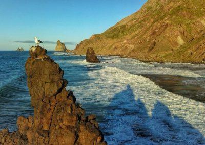fotos de playas de las islas canarias Tenerife La Gomera Gran Canaria amolasislascanarias.es