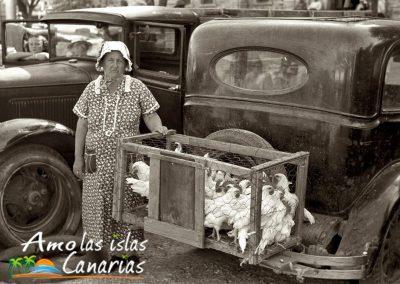 imagenes antiguas de canarias autos y vehiculos en las islas tenerife gran canaria adeje