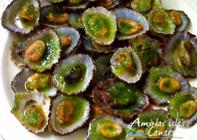 imagenes de lapas con mojo verde marisco de canarias gastronomia local arona