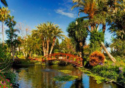 jardin botanico de puerto de la cruz en tenerife