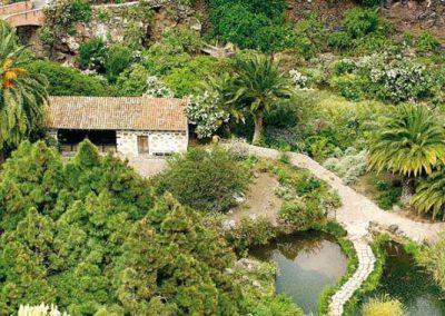 jardin botanico viera y clavijo museo en gran canaria fotos de paisajes naturales islas canarias imagenes europa