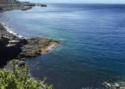 tabaiba oceano atlantico el rosario tenerife