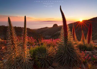 tajinastes paisaje de tenerife foto tenerife amo las islas canarias