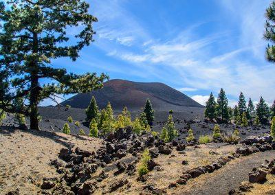 volcano paisaje de tenerife foto de las islas canarias