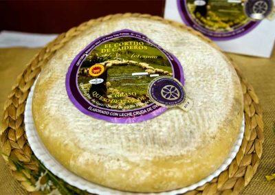 mejor-queso-canarias-2018