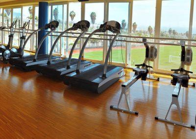 tenerife top training gimnasio en adeje arona tenerife amo las islas canarias