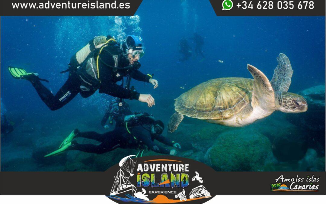 guia de excursiones en tenerife islas canarias